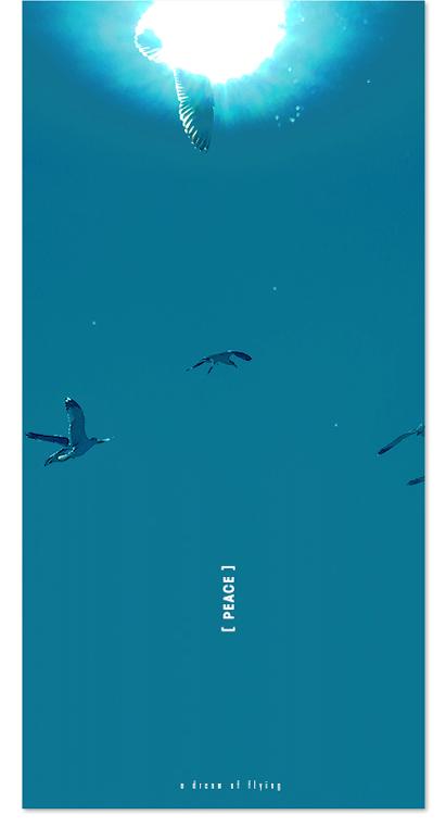 http://www.junbumshin.com/files/gimgs/58_peace-fly-2_v2.jpg